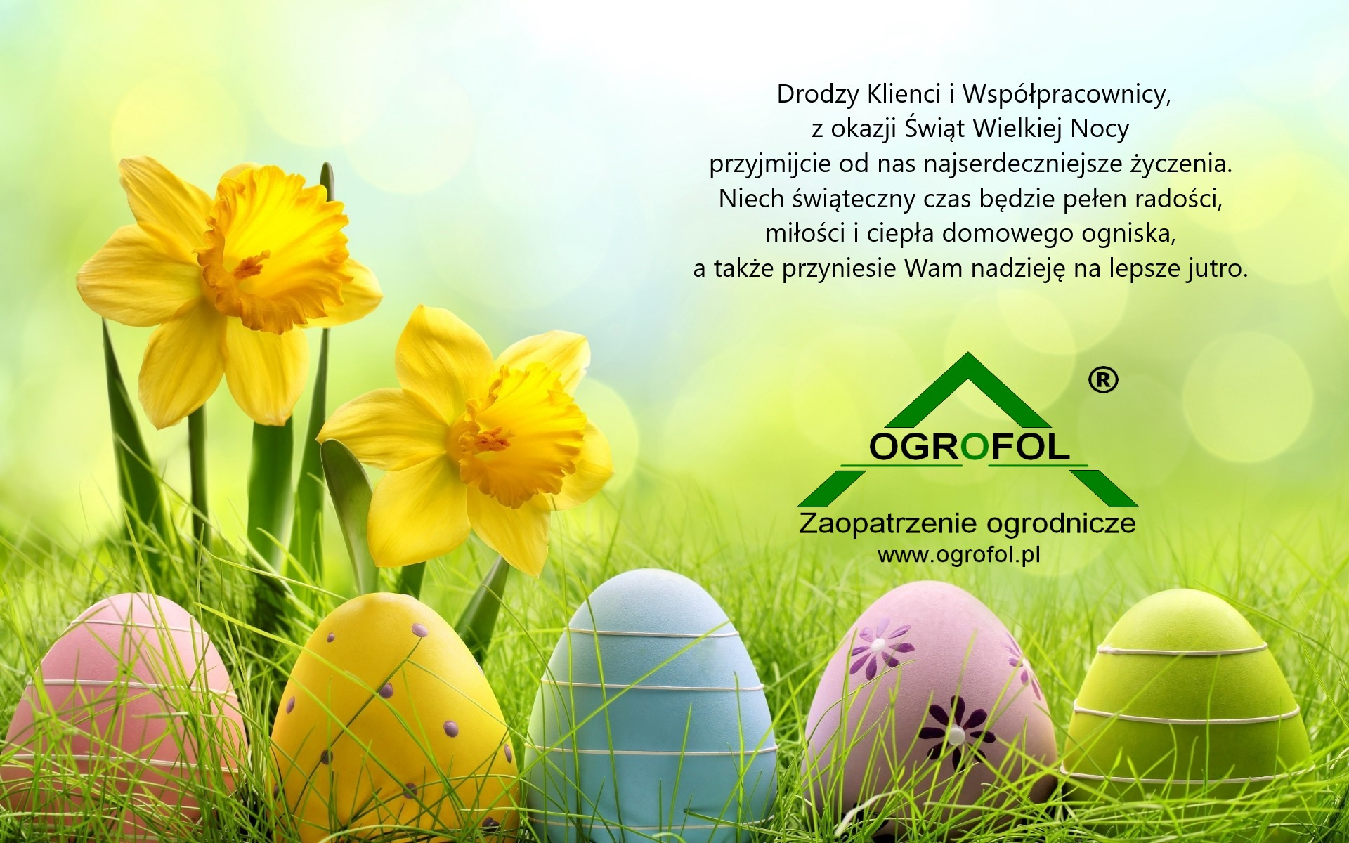 979736-download-free-cute-easter-wallpapers-1920x1200-photo